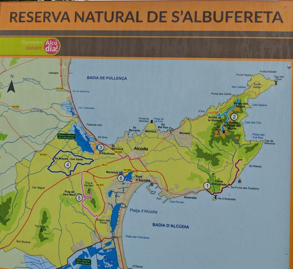 Rutas Albufereta Mallorca
